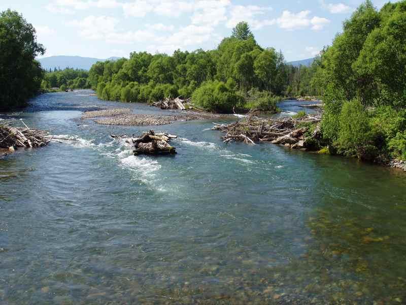 Реки бия длина реки уймень составляет
